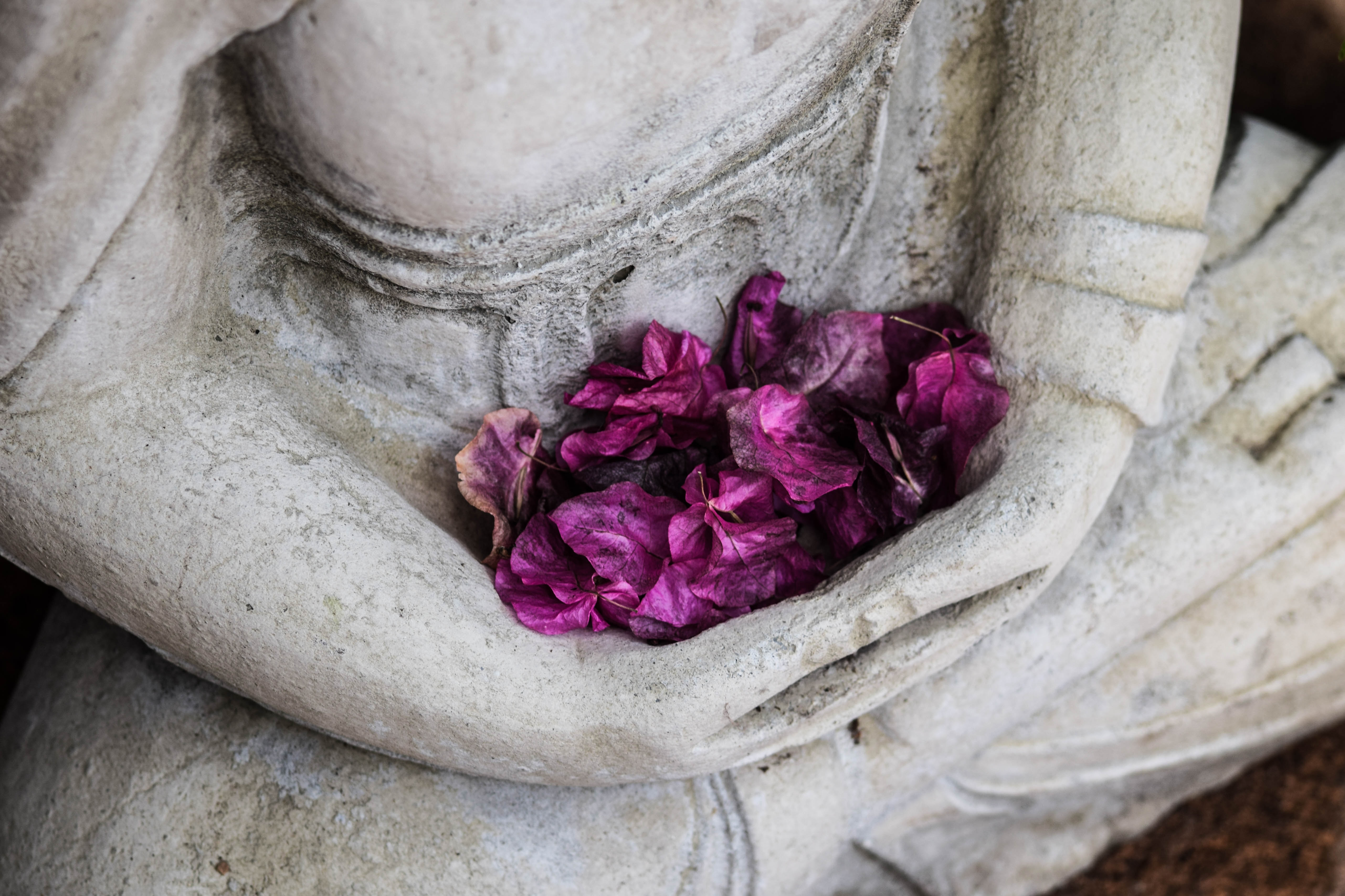 Image of statue holding rose petals